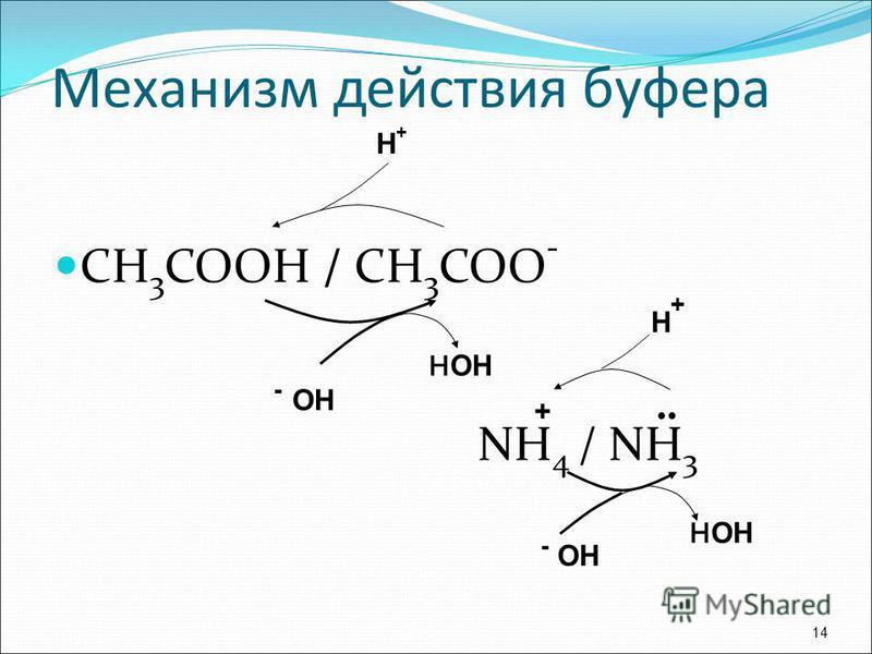 СН 3 СООН / СН 3 СОО - NН 4 / NН 3 14 Н+Н+ - ОН ¨ + Н+Н+ н ОН Механизм действия буфера