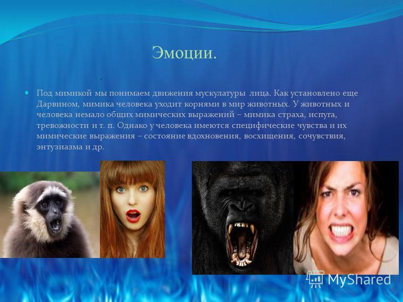 Эмоции.. Под мимикой мы понимаем движения мускулатуры лица. Как установлено еще Дарвином, мимика человека уходит корнями в мир животных. У животных и человека немало общих мимических выражений – мимика страха, испуга, тревожности и т. п. Однако у чел