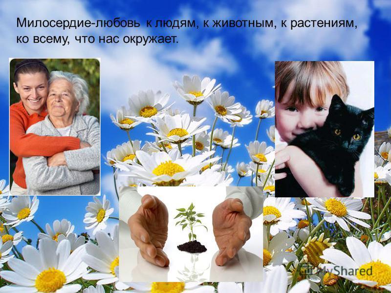 Милосердие-любовь к людям, к животным, к растениям, ко всему, что нас окружает.