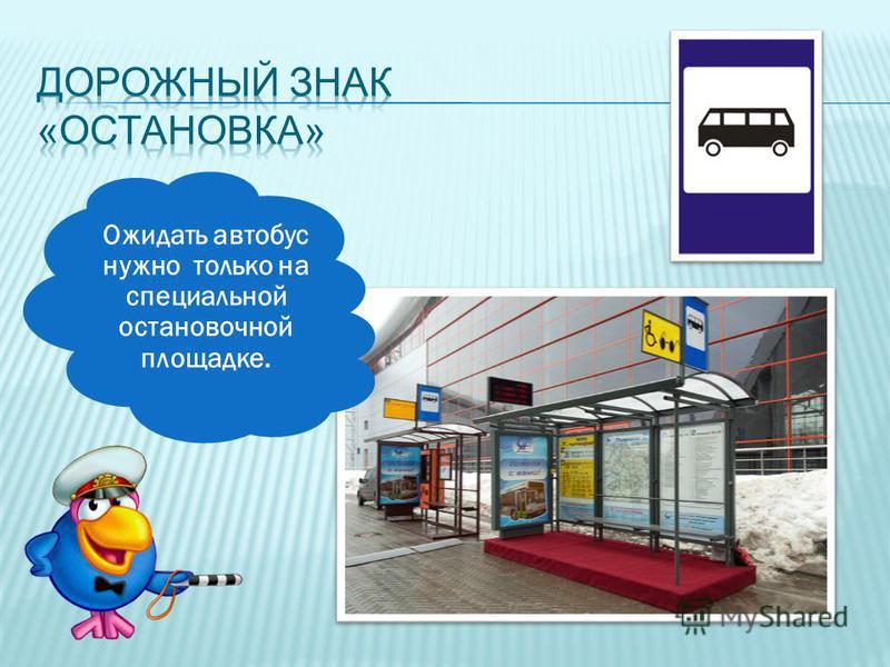 Ожидать автобус нужно только на специальной остановочной площадке.
