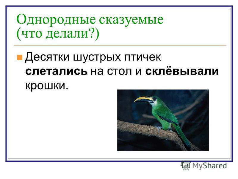 Однородные сказуемые (что делали?) Десятки шустрых птичек слетались на стол и склёвывали крошки.