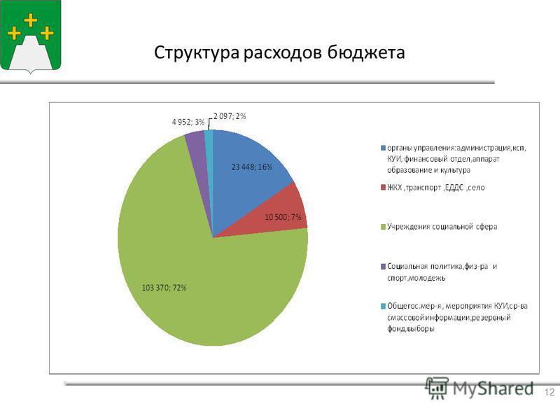 Ссструктура расходов бюджета 12