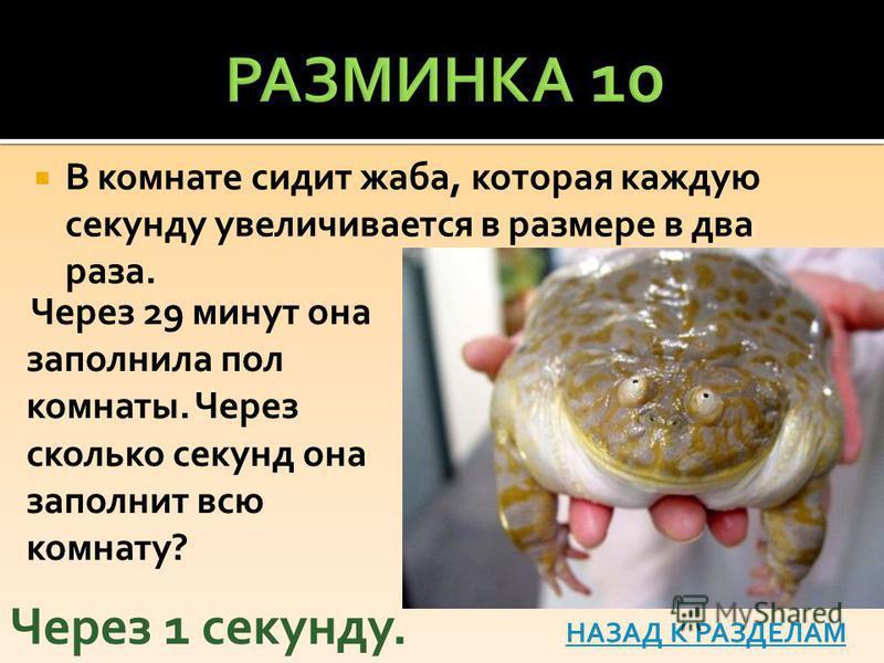 В комнате сидит жаба, которая каждую секунду увеличивается в размере в два раза. Через 1 секунду. НАЗАД К РАЗДЕЛАМ Через 29 минут она заполнила пол комнаты. Через сколько секунд она заполнит всю комнату?