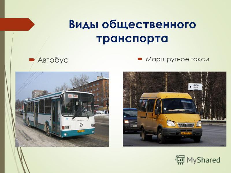 Виды общественного транспорта Автобус Маршрутное такси