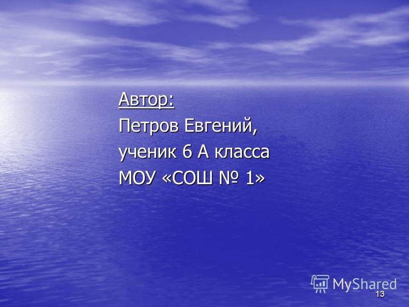 13 Автор: Петров Евгений, ученик 6 А класса МОУ «СОШ 1»