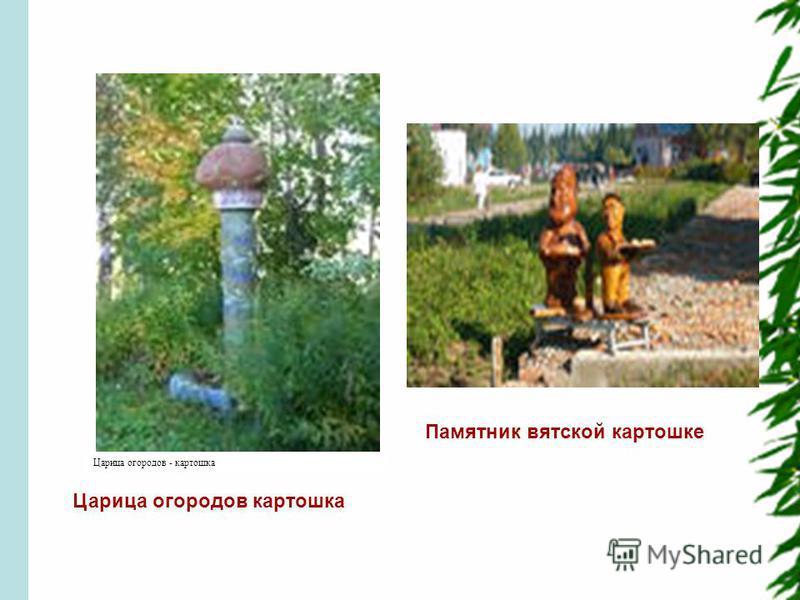 Царица огородов - картошка Царица огородов картошка Памятник вятской картошке