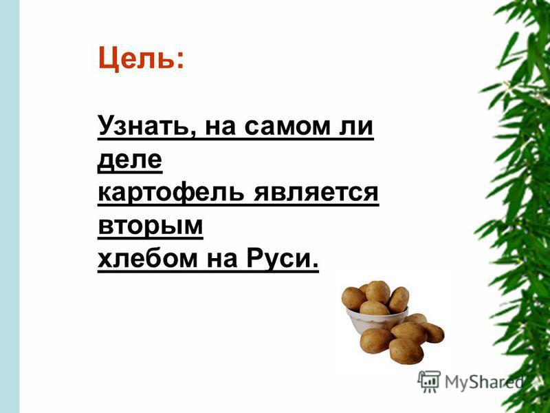 Цель: Узнать, на самом ли деле картофель является вторым хлебом на Руси.