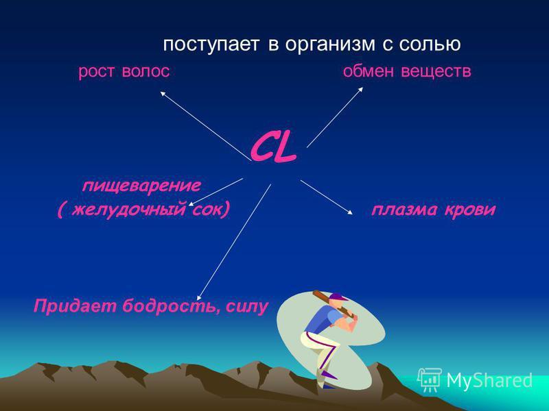 поступает в организм с солью рост волос обмен веществ CL пищеварение ( желудочный сок) плазма крови Придает бодрость, силу