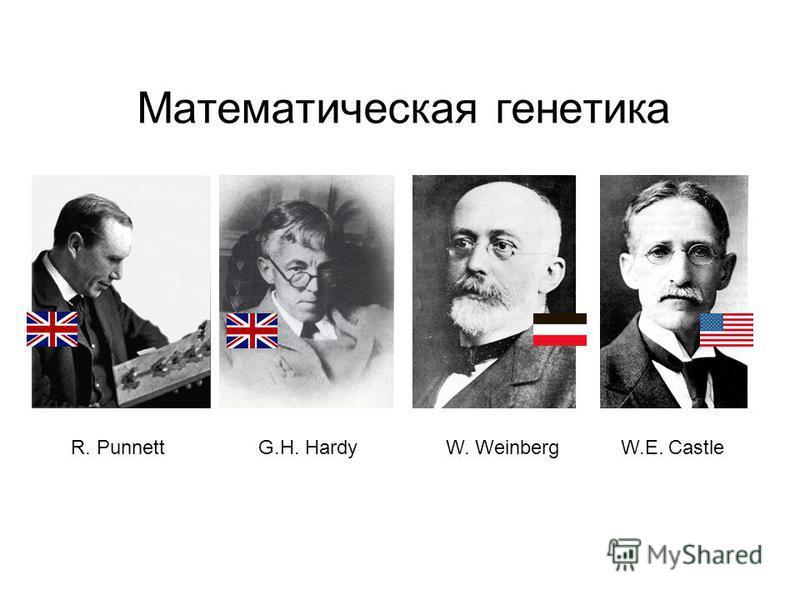 Математическая генетика R. PunnettG.H. HardyW.E. CastleW. Weinberg