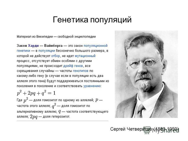 Генетика популяций Сергей Четвериков (1880-1959)