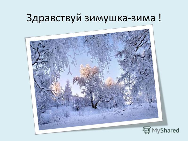Здравствуй зимушка-зима !