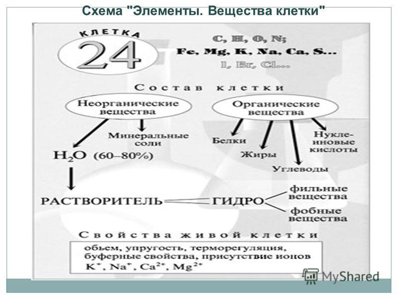 Схема Элементы. Вещества клетки