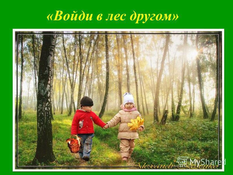 «Войди в лес другом»