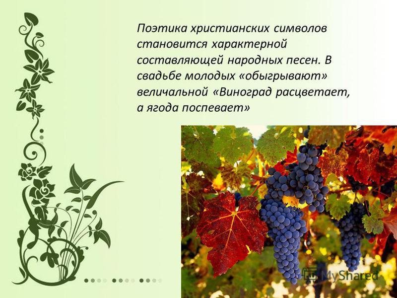Поэтика христианских символов становится характерной составляющей народных песен. В свадьбе молодых «обыгрывают» величальной «Виноград расцветает, а ягода поспевает»
