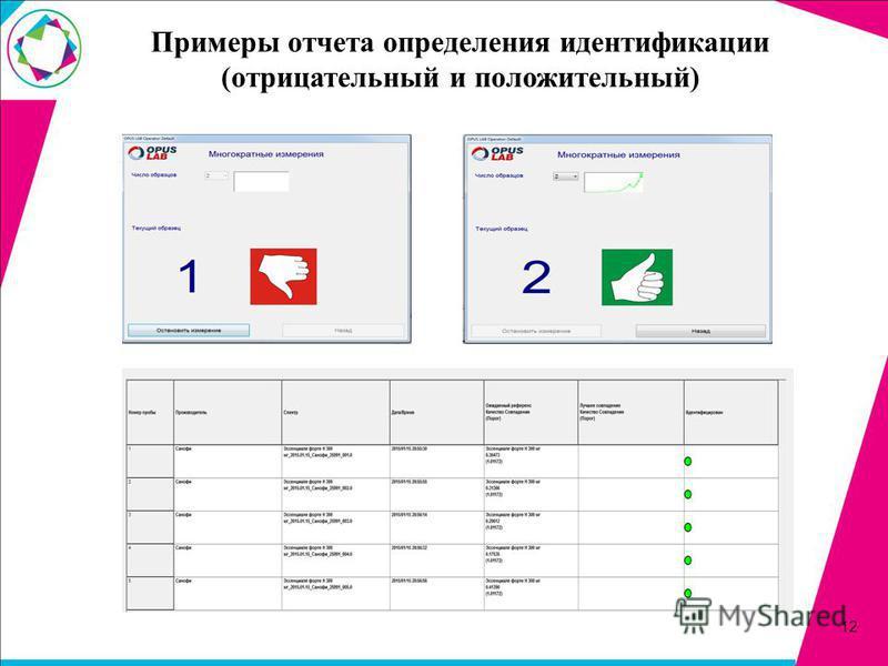 Примеры отчета определения идентификации (отрицательный и положительный) 12