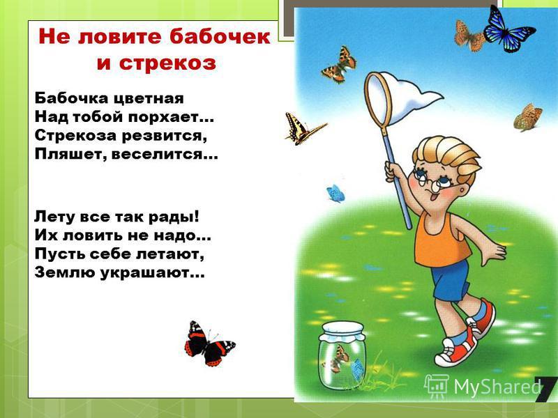 Не ловите бабочек и стрекоз Бабочка цветная Над тобой порхает… Стрекоза резвится, Пляшет, веселится… Лету все так рады! Их ловить не надо… Пусть себе летают, Землю украшают…
