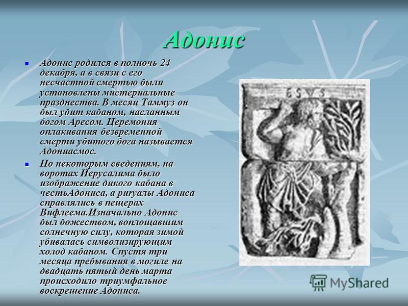 Адонис Адонис родился в полночь 24 декабря, а в связи с его несчастной смертью были установлены мистериальные празднества. В месяц Таммуз он был убит кабаном, насланным богом Аресом. Церемония оплакивания безвременной смерти убитого бога называется А