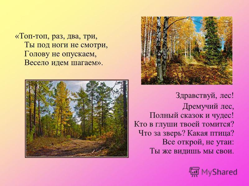 «Топ-топ, раз, два, три, Ты под ноги не смотри, Голову не опускаем, Весело идем шагаем». Здравствуй, лес! Дремучий лес, Полный сказок и чудес! Кто в глуши твоей томится? Что за зверь? Какая птица? Все открой, не утаи: Ты же видишь мы свои.
