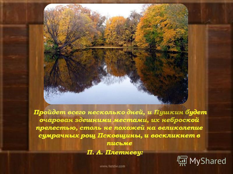 Пройдет всего несколько дней, и Пушкин будет очарован здешними местами, их неброской прелестью, столь не похожей на великолепие сумрачных рощ Псковщины, и воскликнет в письме П. А. Плетневу: