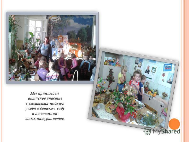 Мы принимаем активное участие в выставках поделок у себя в детском саду и на станции юных натуралистов.