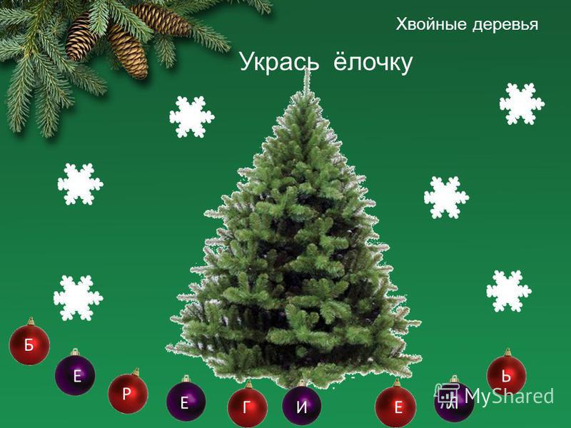 Хвойные деревья Укрась ёлочку Б Р Е ГИ Е Е Л Ь