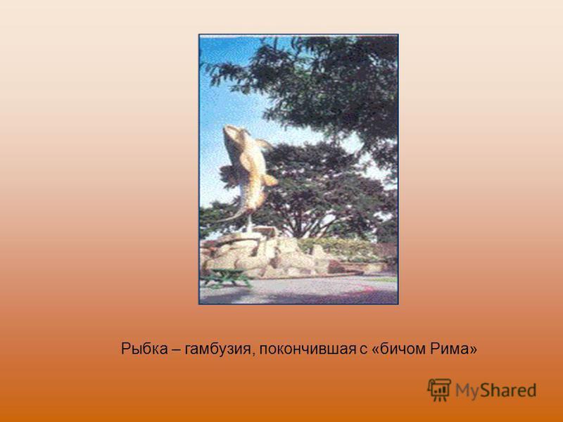 Рыбка – гамбузия, покончившая с «бичом Рима»