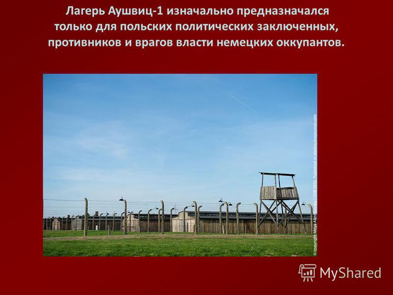 Лагерь Аушвиц-1 изначально предназначался только для польских политических заключенных, противников и врагов власти немецких оккупантов.