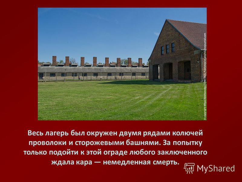 Весь лагерь был окружен двумя рядами колючей проволоки и сторожевыми башнями. За попытку только подойти к этой ограде любого заключенного ждала кара немедленная смерть.