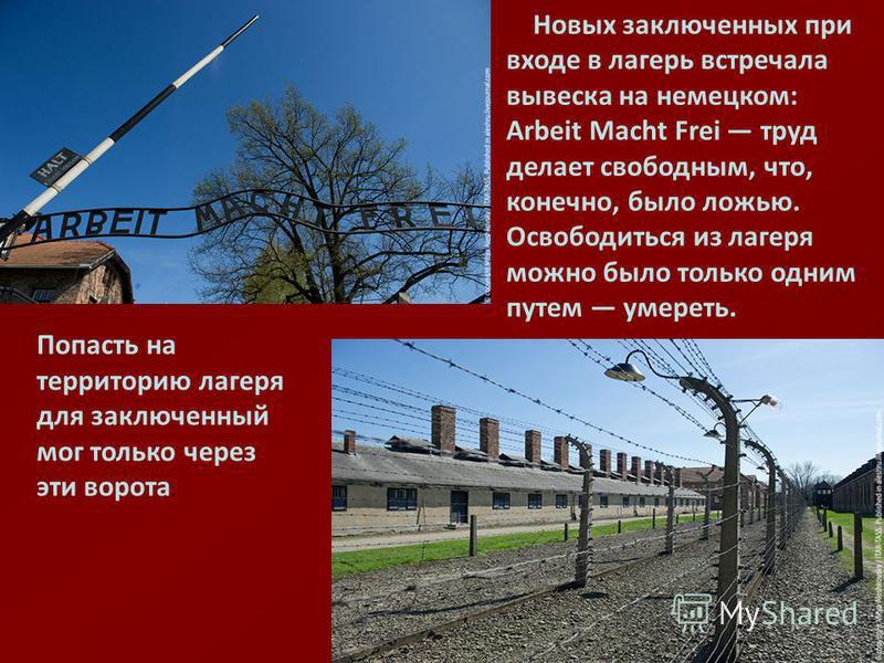 Новых заключенных при входе в лагерь встречала вывеска на немецком: Arbeit Macht Frei труд делает свободным, что, конечно, было ложью. Освободиться из лагеря можно было только одним путем умереть. Попасть на территорию лагеря для заключенный мог толь