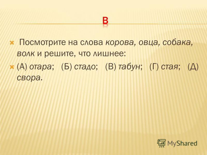 Посмотрите на слова корова, овца, собака, волк и решите, что лишнее: (А) отара; (Б) стадо; (В) табун; (Г) стая; (Д) свора.