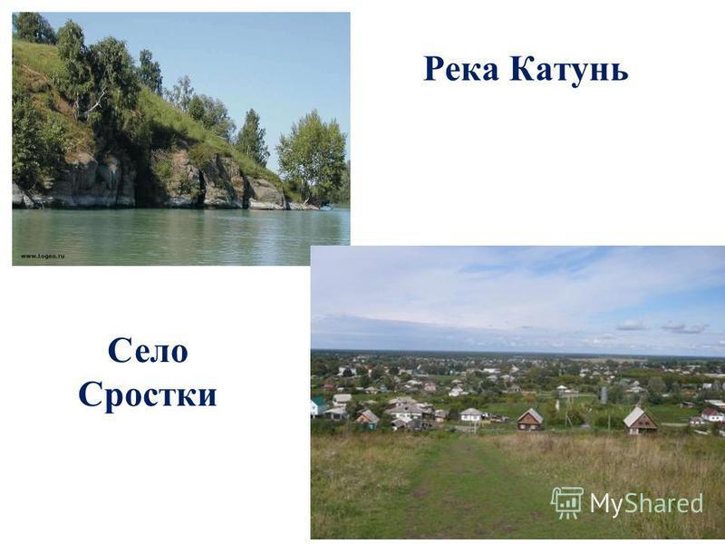 Река Катунь Село Сростки