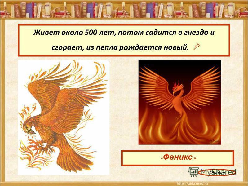 Живет около 500 лет, потом садится в гнездо и сгорает, из пепла рождается новый. ? « Феникс » Ответ