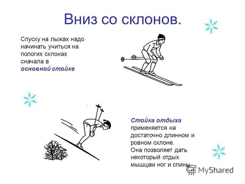 Вниз со склонов. Спуску на лыжах надо начинать учиться на пологих склонах сначала в основной стойке Стойка отдыха применяется на достаточно длинном и ровном склоне. Она позволяет дать некоторый отдых мышцам ног и спины.