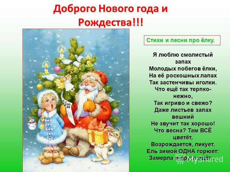 Доброго Нового года и Рождества!!! Стихи и песни про ёлку. Я люблю смолистый запах Молодых побегов ёлки, На её роскошных лапах Так застенчивы иголки. Что ещё так терпко- нежно, Так игриво и свежо? Даже листьев запах вешний Не звучит так хорошо! Что в