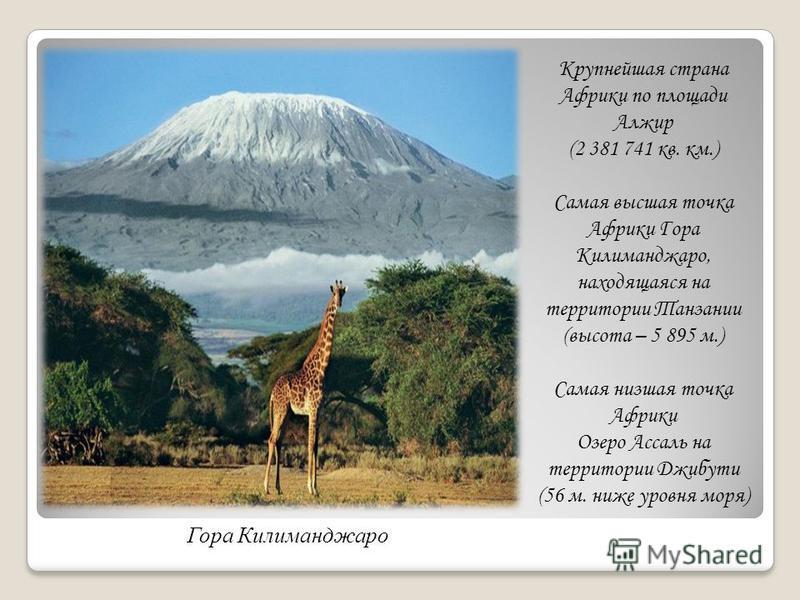 Крупнейшая страна Африки по площади Алжир (2 381 741 кв. км.) Самая высшая точка Африки Гора Килиманджаро, находящаяся на территории Танзании (высота – 5 895 м.) Самая низшая точка Африки Озеро Ассаль на территории Джибути (56 м. ниже уровня моря) Го