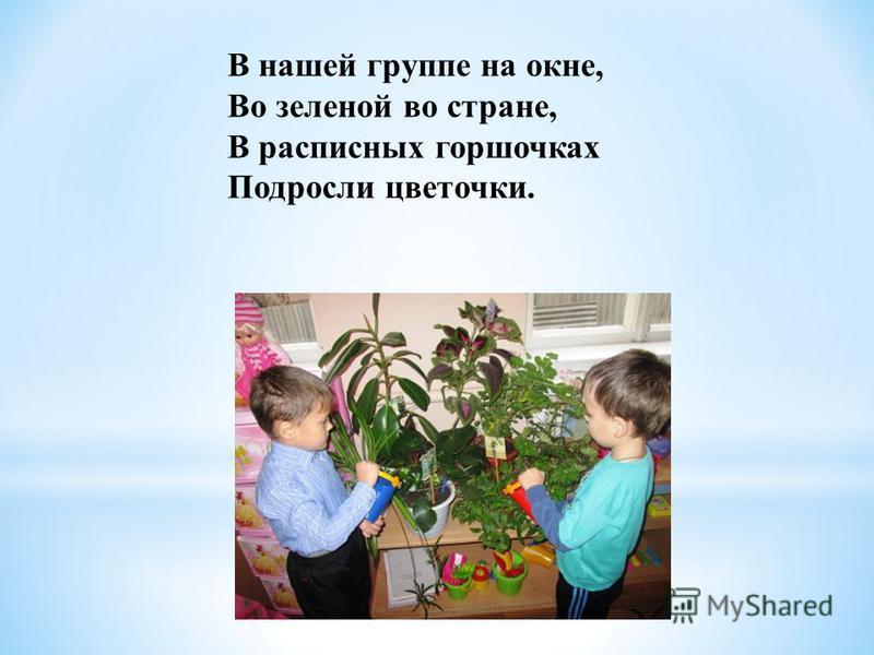В нашей группе на окне, Во зеленой во стране, В расписных горшочках Подросли цветочки.