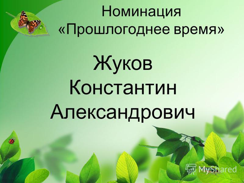 Номинация «Прошлогоднее время» Жуков Константин Александрович
