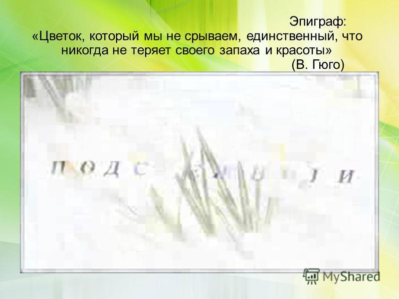 Эпиграф: «Цветок, который мы не срываем, единственный, что никогда не теряет своего запаха и красоты» (В. Гюго) Лишь первый солнца луч земли коснулся, Распространяя аромат весны, Под снегом крохотный цветок проснулся, Оставили его в покое сны. Своим