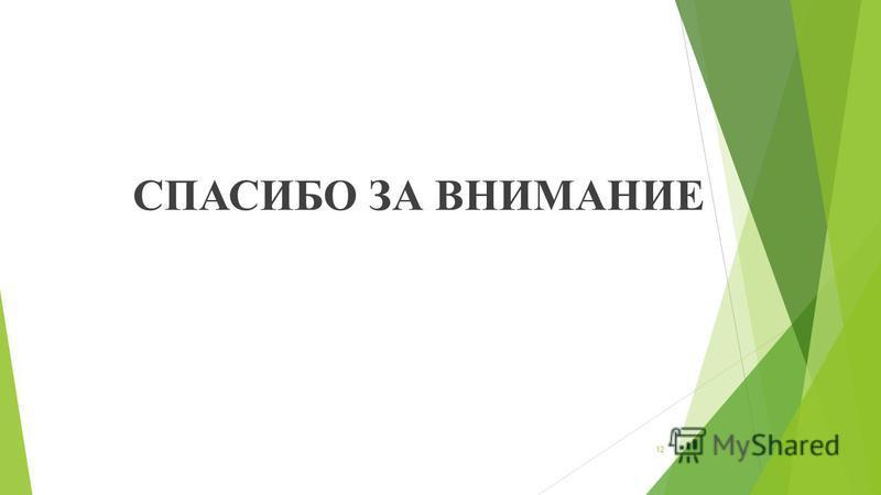 СПАСИБО ЗА ВНИМАНИЕ 12