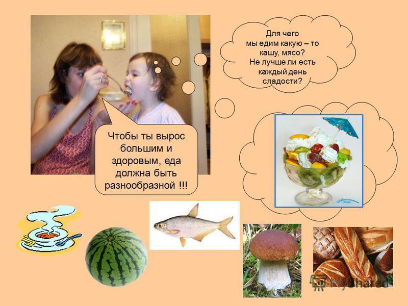Для чего мы едим какую – то кашу, мясо? Не лучше ли есть каждый день сладости? Чтобы ты вырос большим и здоровым, еда должна быть разнообразной !!!
