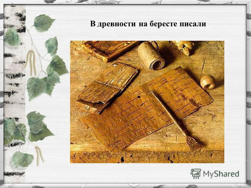 В древности на бересте писали