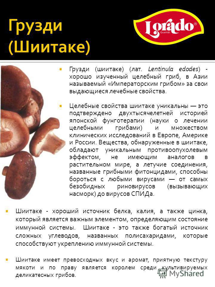 Грузди (шиитаке) (лат. Lentinula edodes) - хорошо изученный целебный гриб, в Азии называемый «Императорским грибом» за свои выдающиеся лечебные свойства. Целебные свойства шиитаке уникальны это подтверждено двухтысячелетней историей японской фунготер
