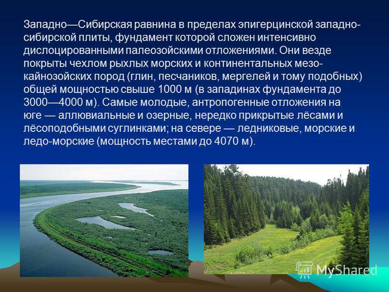 Западно Сибирская равнина в пределах эпигерцинской западно- сибирской плиты, фундамент которой сложен интенсивно дислоцированными палеозойскими отложениями. Они везде покрыты чехлом рыхлых морских и континентальных мезо- кайнозойских пород (глин, пес