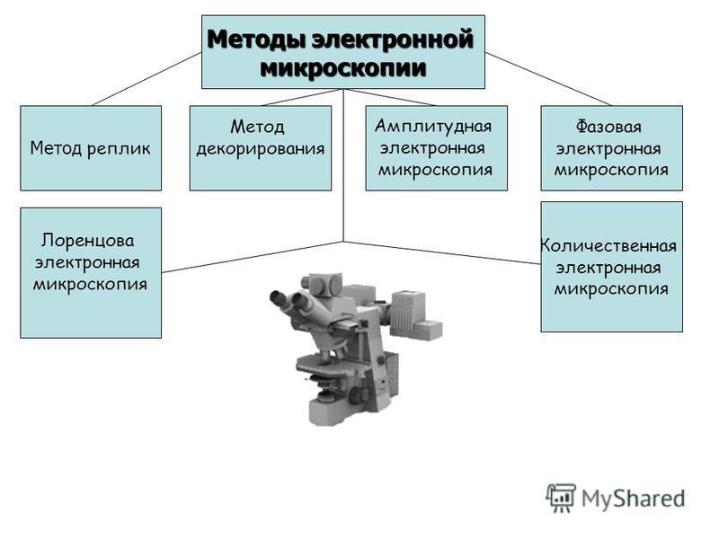 Методы электронной микроскопии Метод реплик Метод декорирования Амплитудная электронная микроскопия Фазовая электронная микроскопия Лоренцова электронная микроскопия Количественная электронная микроскопия