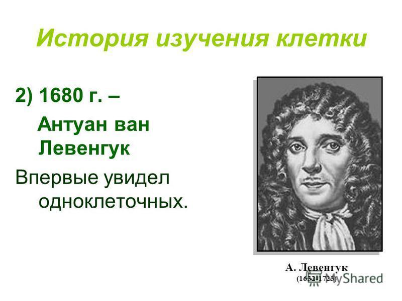 История изучения клетки 2)1680 г. – Антуан ван Левенгук Впервые увидел одноклеточных. А. Левенгук (1632-1723)