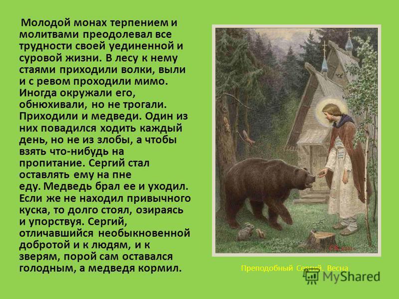 Преподобный Сергий. Весна Молодой монах терпением и молитвами преодолевал все трудности своей уединенной и суровой жизни. В лесу к нему стаями приходили волки, выли и с ревом проходили мимо. Иногда окружали его, обнюхивали, но не трогали. Приходили и