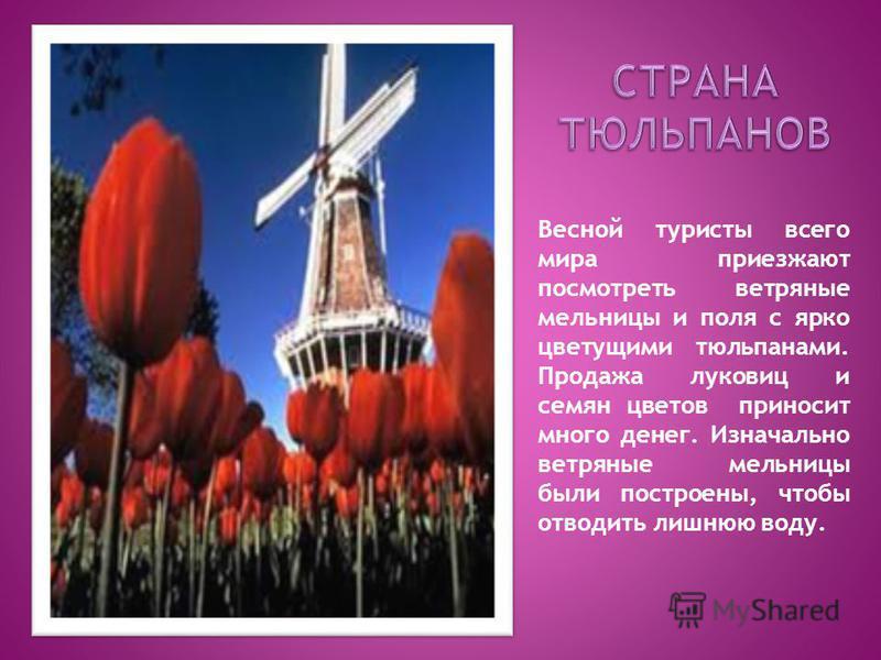 Весной туристы всего мира приезжают посмотреть ветряные мельницы и поля с ярко цветущими тюльпанами. Продажа луковиц и семян цветов приносит много денег. Изначально ветряные мельницы были построены, чтобы отводить лишнюю воду.