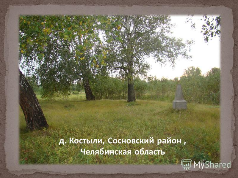 д. Костыли, Сосновский район, Челябинская область