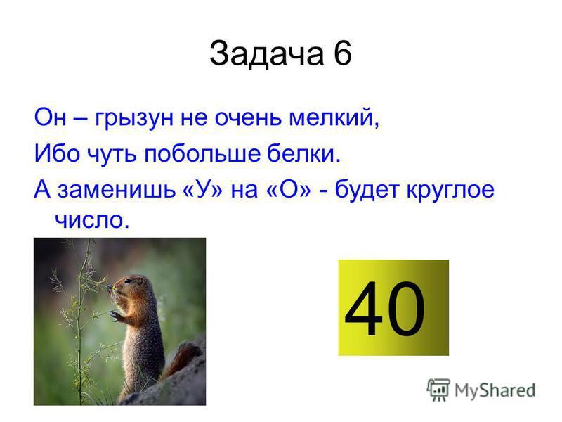 Задача 6 Он – грызун не очень мелкий, Ибо чуть побольше белки. А заменишь «У» на «О» - будет круглое число. 40