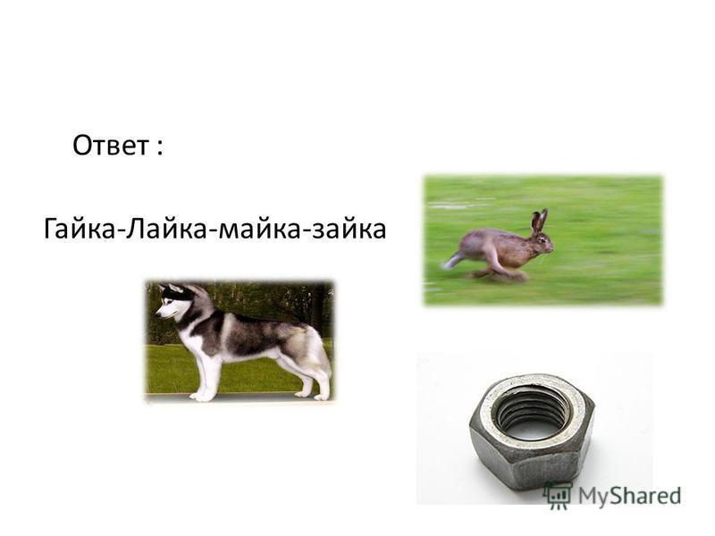 Гайка-Лайка-майка-зайка >>